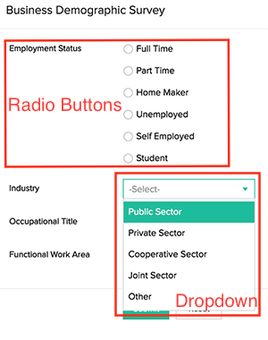 radio and dropdown form fields