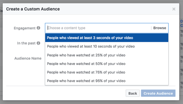custom audiences based on percentage of video views